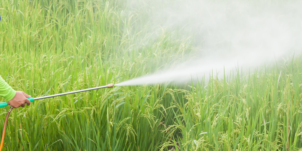 Safe Pesticide Usage